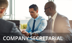 Company secretarial services from Brooking Ruse