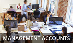 Management accounts preparation from Brooking Ruse